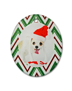 Clear Satin Oval Glass Ornament -Portrait